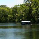Glass Bottom Boat on Silver Springs by ValeriesGallery