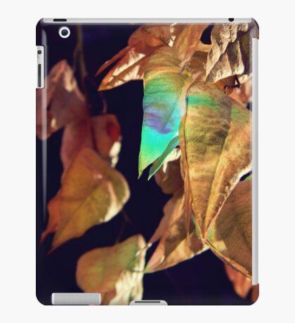 ....... iPad Case/Skin