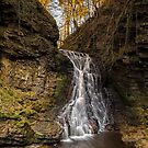 Hareshaw Linn - Bellingham by David Lewins