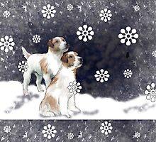 Jack Russell terriers  by IowaArtist