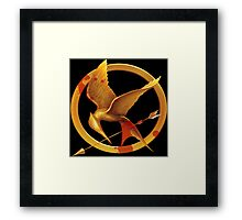 Hunger Games Pin - (Designs4You) Framed Print