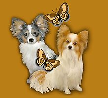 Papillons and butterflies by IowaArtist