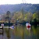 Fell Foot Windermere by mikebov