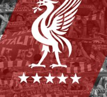Liverbird Over Kop Sticker