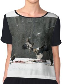 Majestic fight Chiffon Top