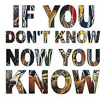 IF YA DON'T KNOW..  Photographic Print