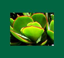 Succulent - PADDLE PLANT or Aeonium Tree Unisex T-Shirt