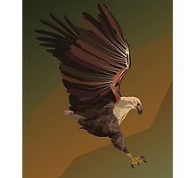 Strength of an Eagle Photographic Print