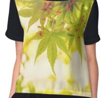 Green leaves of Japanese maple - vintage style Chiffon Top