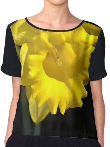 The Daffodil Glows Chiffon Top