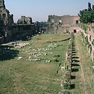 Stadia in Palatine Palace Rome Italy 19840719 0010 by Fred Mitchell