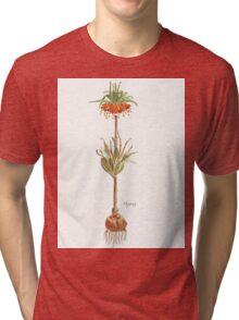 Fritillaria imperialis (Crown imperial) Botanical Tri-blend T-Shirt