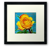 A yellow Rose . Framed Print