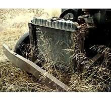 Weeds & Grill Photographic Print