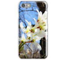 Flowers - serviceberry blossoms (2016) iPhone Case/Skin