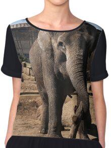 asia elephant Chiffon Top