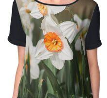 White Narcissus Chiffon Top