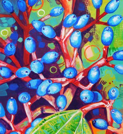 Viburnum Davidii Sticker
