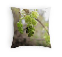ant on white currant flower Throw Pillow
