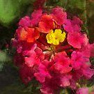 Spring Crown by jean-louis bouzou