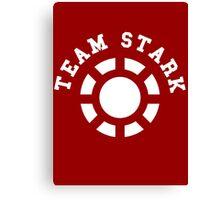 Team Stark - old reactor Canvas Print