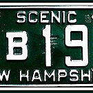 1966 Scenic New Hampshire  by ©The Creative  Minds