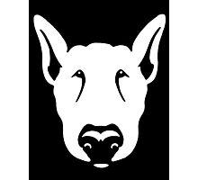 Bull Terrier Head Graphic  Photographic Print