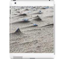 Visible Wind iPad Case/Skin