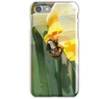 Bumblebee on Daffodils iPhone Case/Skin