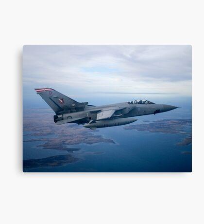 Defending the Falkland Islands Canvas Print