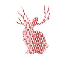 The Pattern Rabbit Photographic Print