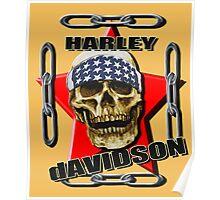 HARLEY DAVIDSON SKULL Poster