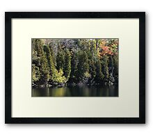 Light, Forest, Autumn and Lake. Framed Print