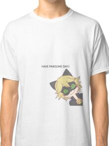 HAVE PAWSOME DAY!! Classic T-Shirt