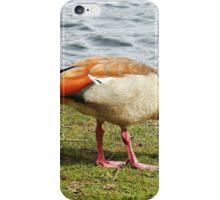 """A Stranger at Petworth Park""  ( sussex) iPhone Case/Skin"