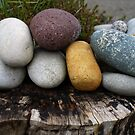 A cluster of stones by Agnes McGuinness