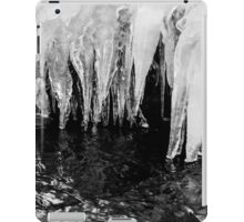 Black and White Icicles iPad Case/Skin