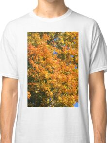 Leaves on a tree coloured in green, yellow red and orange. Classic T-Shirt