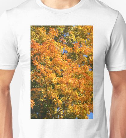 Leaves on a tree coloured in green, yellow red and orange. Unisex T-Shirt