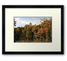 Early Fall Season around the lake. Framed Print