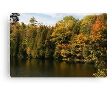 Tress  in Fall colours around the lake and their reflection in the water.  Canvas Print