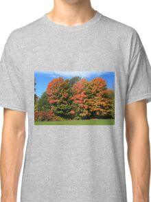 Tress  in Fall colours.  Classic T-Shirt