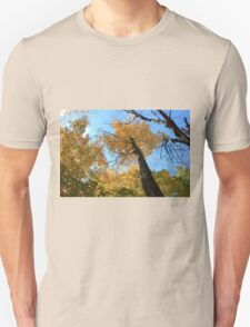 Fall coloured forest.  T-Shirt