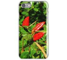 Christmas Colours iPhone Case/Skin