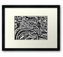 BW30 Framed Print
