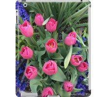 pInK Tulips, Spring in New York iPad Case/Skin