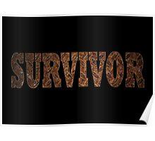 Survivor (Rust) Poster