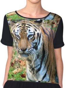 Staring into the Eyes of Danger Chiffon Top