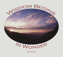Wisdom Begins in Wonder by William C. Gladish