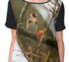 Goldfinch on a branch Chiffon Top